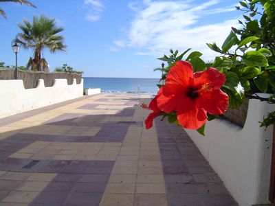 Very comfortable apartment on a peninsula, exceptional climate, beautiful country.
