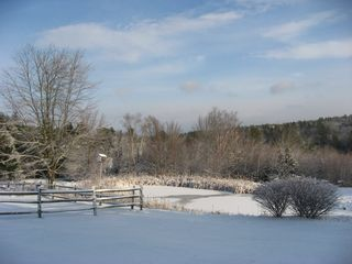 Alna house photo - Beautiful Peaceful Views in any Season