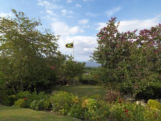 Montego Bay villa photo - Our beautiful gardens and lawns
