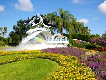 Find many Attractions in Orlando