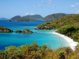 Cruz Bay condo photo - Trunk Bay, less than 10-minute drive from your vacation condo in Cruz Bay