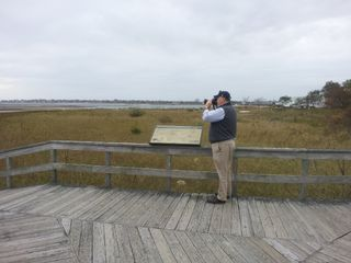 Milford cottage photo - Bird-Watchers Paradise 350 species Coastal Audubon at Milford Point 3/8 mi away