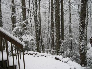 Dillsboro cabin photo - Winter At The Comfort Zone