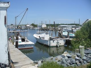 Crisfield house photo - Right on our road is Small Boat Harbor with 2 free public boat ramps