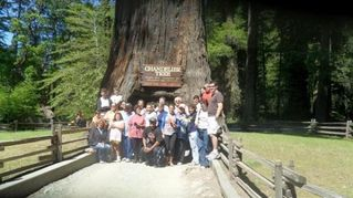 Coos Bay house photo - Family at Drive Through Tree