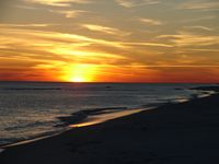 Island Sunsets  * Sunset Harbor The Palms  Elevator  Water Front 1br Sleeps 4