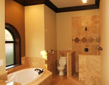 Burnsville villa rental - Bath 4 lower level with shower and Jacuzzy