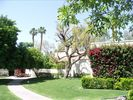Walkway to the front Entrance to the House - Rancho Mirage villa vacation rental photo