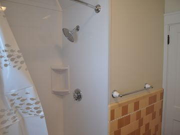 Downstairs Shower