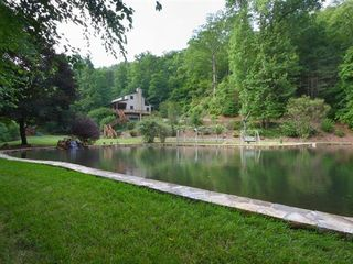 Hiawassee estate photo - Pond View of House - swimming and fishing