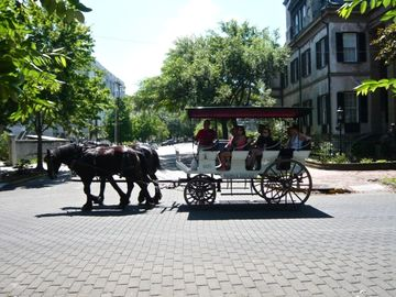 Historic district carriage rides