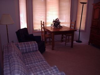 Pinetop house photo - Guest House Living Room with sofa bed
