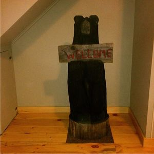 Saranac Lake lodge rental - The Bear in Bear'n Lodge.