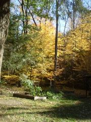Tannersville cabin photo - Autumn