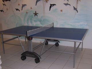 Oxnard house photo - indoor table tennis