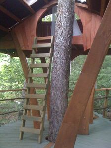 Warren house rental - Kids love our treehouse sleeping loft
