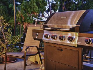 Los Feliz Hills studio photo - Ne BBQ