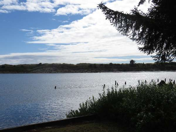 Siuslaw Riverfront home, 3 bedroom, 2 bath, dog friendly - Dune it Right