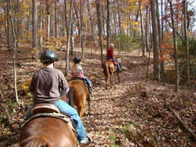 Horseback Riding in the area