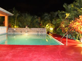 St. Patricks house photo - Salt water pool with greenery night time