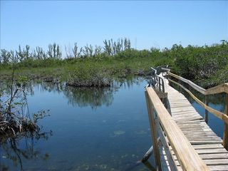 Grand Bahama Island cottage photo - Lucaya National Park, driving distance from Eden Cottage.