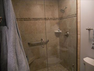 Master Bathroom Shower. Bathroom has granite countertops and custom cabinets.