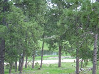 Custer house photo - Beautiful Scenery from Covered Gazebo. Wild Life watering area.
