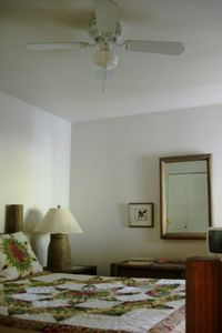 Ceiling fan for low or high choice.