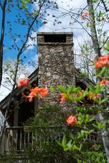 Sapphire cottage photo - Spring is a Beautiful Time of Year.