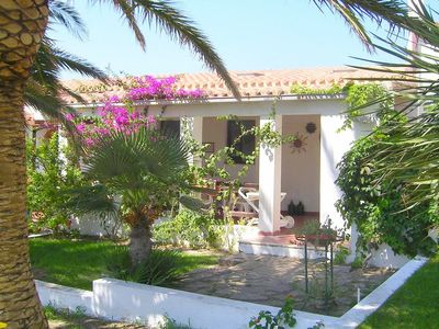 Villa with garden and olive trees, just steps away from sea and lovely village.