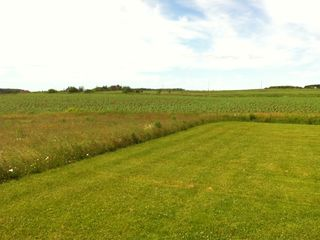 A view of the back of the lot - backing onto a PEI Potato crop!