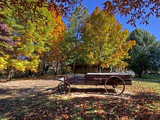 Pigeon Forge cabin photo - Leveled Yard in Fall. Great Photo Opportunity!