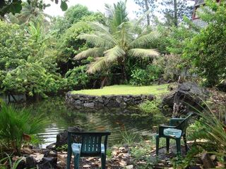 Kapoho house photo - Garden Pond (pond 2)