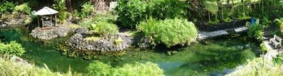 A Panorama of the Warm Pond. It's a private lagoon just waiting for YOU!