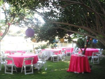 Back yard set up for a 50 guest wedding reception!