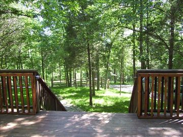 View from the deck towards the woods