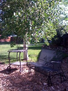a backyard setting that is Colorado living - sit outside and enjoy with friends