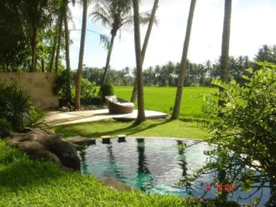 luxury villa with swimming pool and staff