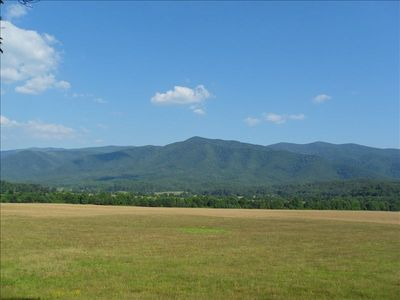 Cades Cove: see pioneer cabins, churches, cemetaries, bear,deer, wild turkeys