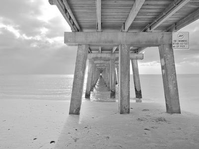 Under the Pier Courtesy of Wi Cunningham