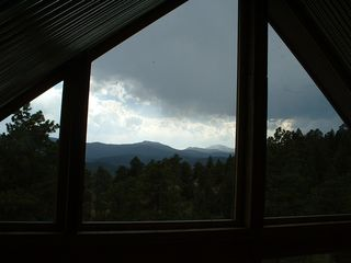 Evergreen house photo - The view looking out from the loft bedroom at the guesthouse(cabin).