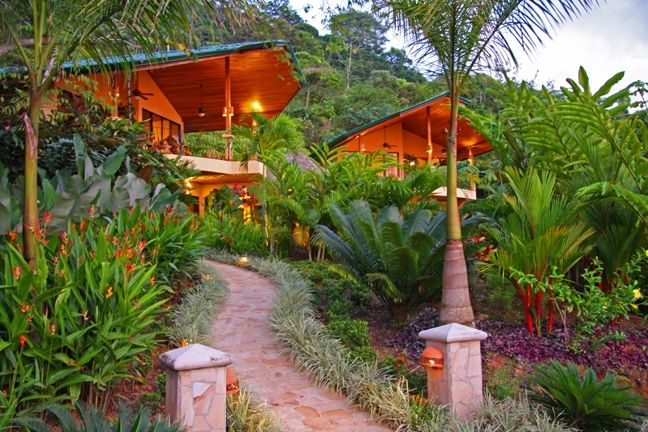Monkeys toucans and ocean view sunsets all vrbo for Escaleras rintal
