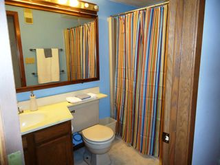 Bellaire / Shanty Creek condo photo - Guest bath