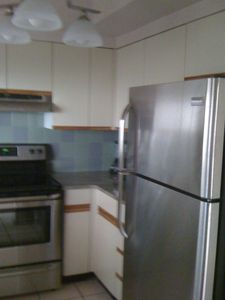 Updated kitchen lighting, granite counter, and all new stainless appliances.