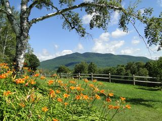 Ascutney farmhouse photo - View from the guest apartment window