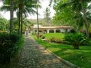 Main Entrance driveway through the gardens - El Salvador house vacation rental photo