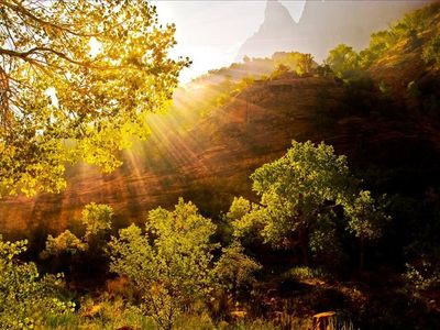 Let There Be Light Zion Sunburst Zion National Park Photo by Karen Williams