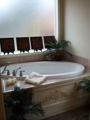 Hot Springs house photo - Master Bath (Jacuzzi and Jet shower)