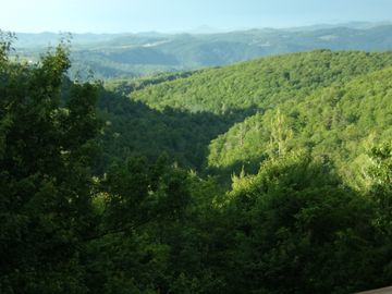Blowing Rock cabin rental - Far mountains are Virginia A glass wall in the master shows this from your bed