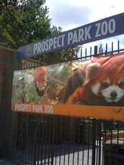 Brooklyn townhome photo - Prospect Park Zoo is home to nearly 400 animals of more than 80 species!
